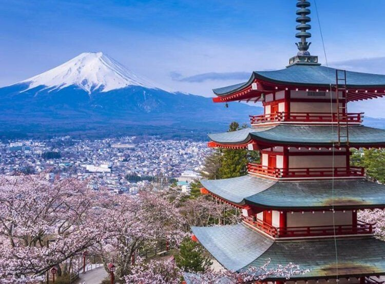 Susan Cleveland's Japan Quilting and Textile Tour