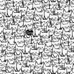 108 Inch Quilt Back - Packed Cats